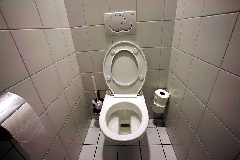 Des toilettes à double chasse pour économiser eau et argent
